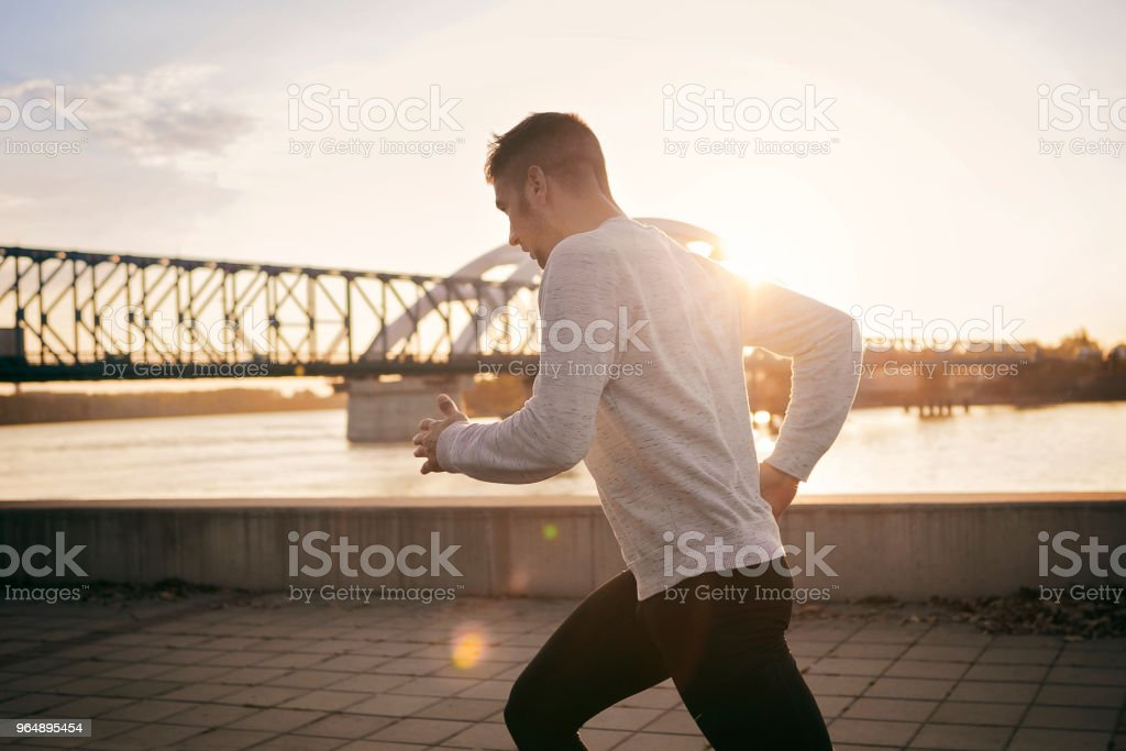 Morning Runner royalty-free stock photo