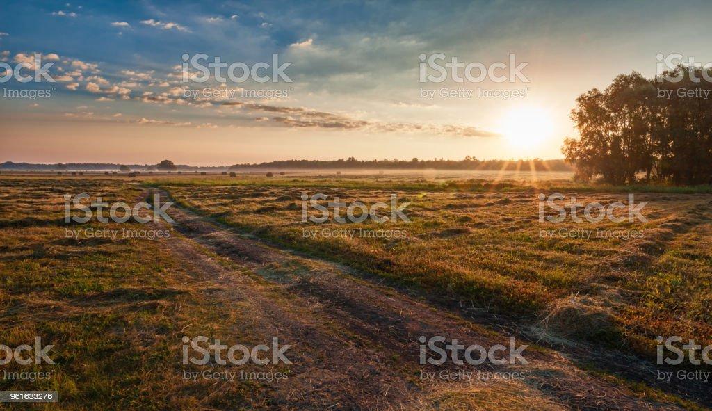 Morning rural landscape stock photo