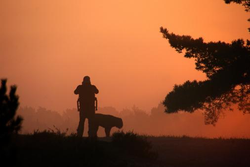 Morning scene on the heathland