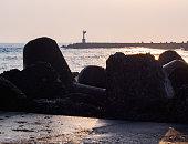テトラポッドの上朝海