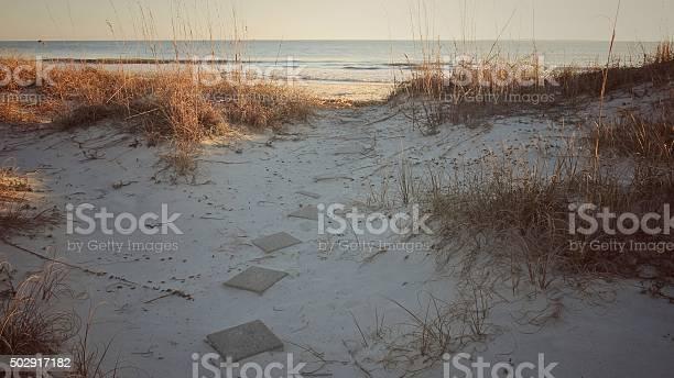 Photo of Morning Shaded Cement Block Path, Hilton Head Beach, South Carolina