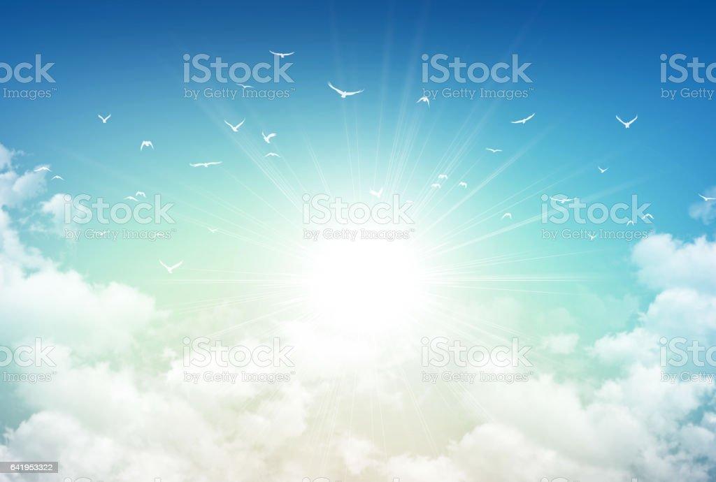 Morning sky light stock photo