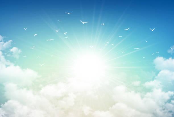 morning sky light - cennet stok fotoğraflar ve resimler