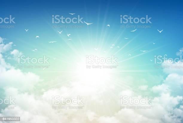 Photo of Morning sky light