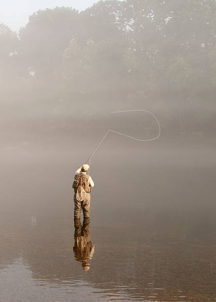Morning Sunlight on Flyfisherman in the Fog Man flyfishing in the fog with his reflection in the water. wading stock pictures, royalty-free photos & images