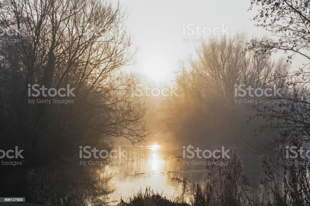 Morning sunlight shines across a foggy lake stock photo