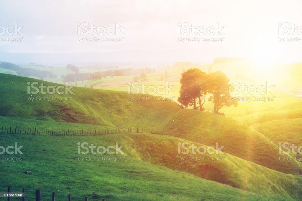 Sonnenaufgang am Morgen am grünen Rasen Hof auf dem Hügel. – Foto