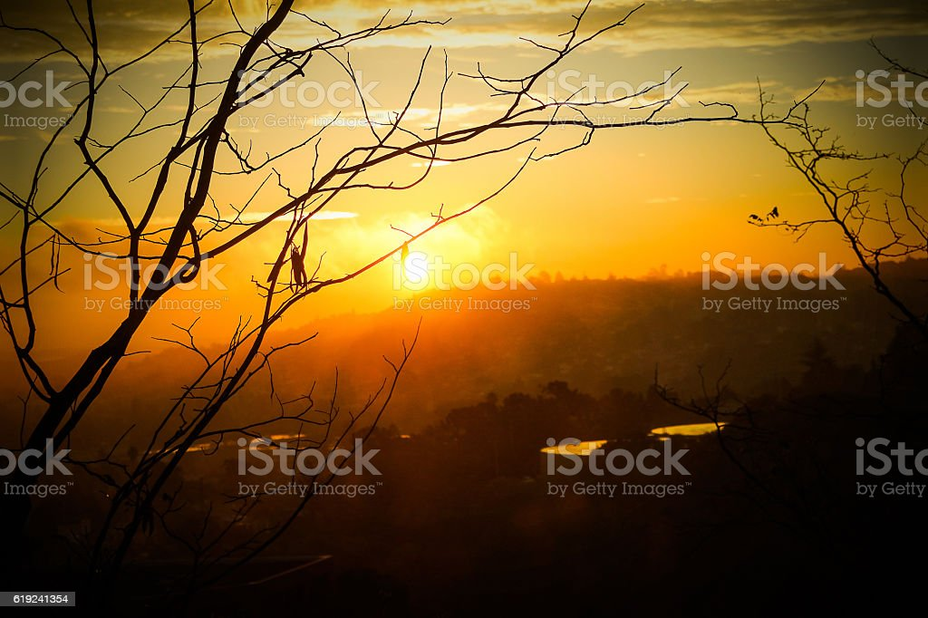 Morning Sunrise stock photo