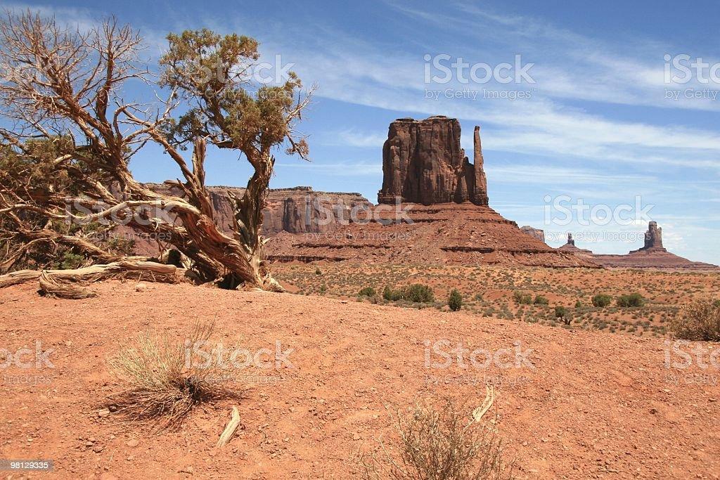 Morning Sunshine in Monument Valley, Arizona, Southwest USA royalty-free stock photo