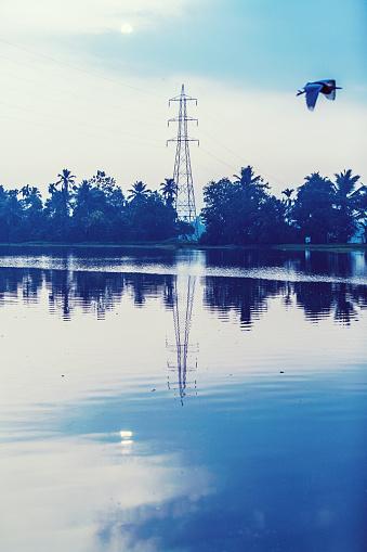 Morning view of Kerala Backwaters
