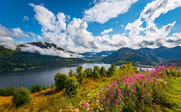 Morning view over Loch Duich Early morning at Loch Duich in the Highlands of Scotland with low lying clouds and mountain views scottish highlands stock pictures, royalty-free photos & images
