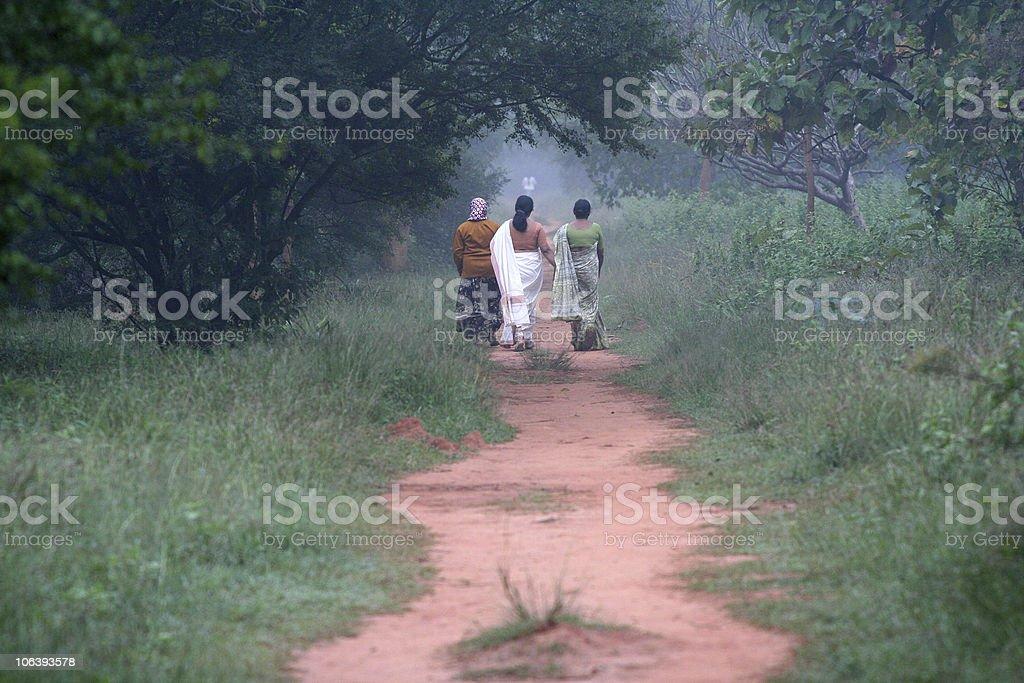 morning walk in bangalore royalty-free stock photo