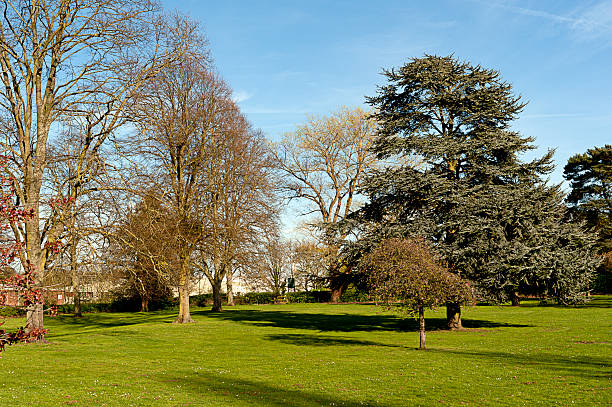 Morning walk, in Chineham Park, Basingstoke stock photo