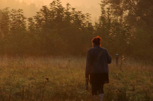 Morning walk in the heathland