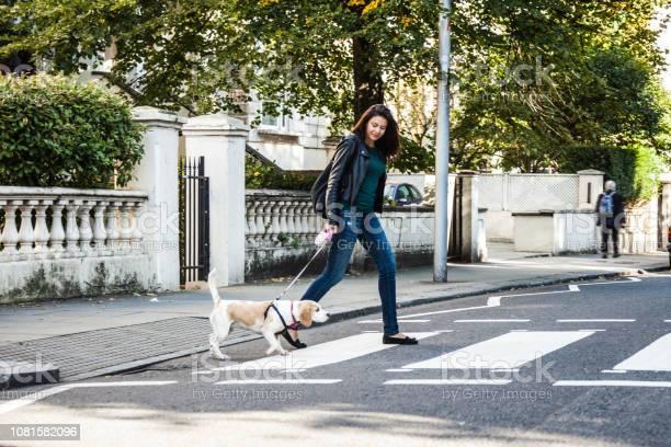 Morning walk with dog in london picture id1081582096?b=1&k=6&m=1081582096&s=612x612&h=lawsdgcd71jbc5kjimtz9yh6jypf8w38fxfbrvqtfnm=