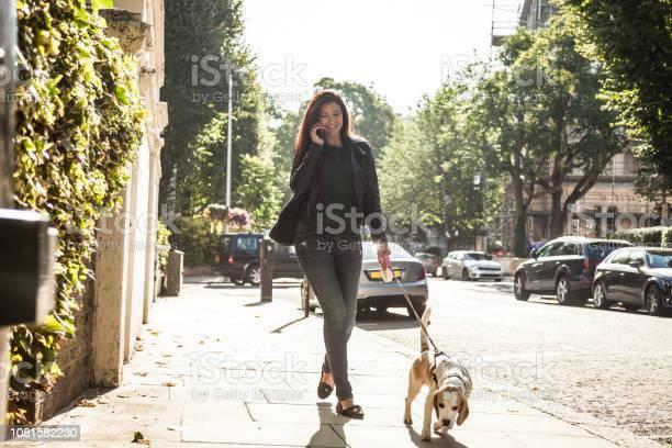 Morning walk with dog in london picture id1081582230?b=1&k=6&m=1081582230&s=612x612&h=dpwuzbcygb9wlynb0epfuafjc a3kshhvgo57ksrgjm=