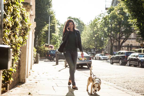 Morning walk with dog in london picture id1081582230?b=1&k=6&m=1081582230&s=612x612&w=0&h=pn mn jzmfo dgeryd9eytbdejq0zrynr rz8xvvb w=