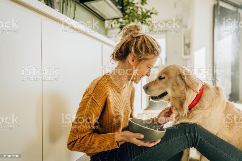 Morgens mit meinem Hund in unserer Küche - Lizenzfrei Arbeitsplatte Stock-Foto
