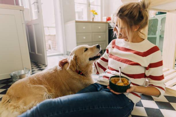 Morgens mit meinem Haustier in unserer Küche – Foto