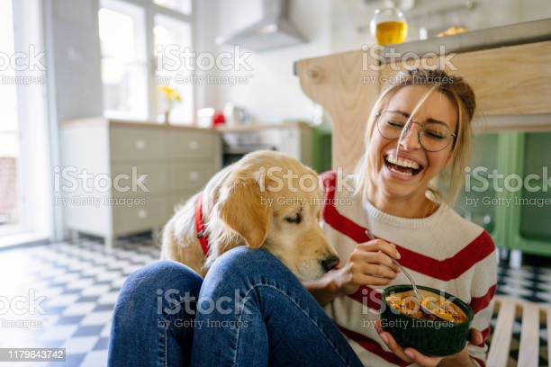 Morning with my pet in our kitchen picture id1179643742?b=1&k=6&m=1179643742&s=612x612&h=v0 ebjuw6ubu0ku7xbcb56dkrtmkk3uvgialk7wtrsi=