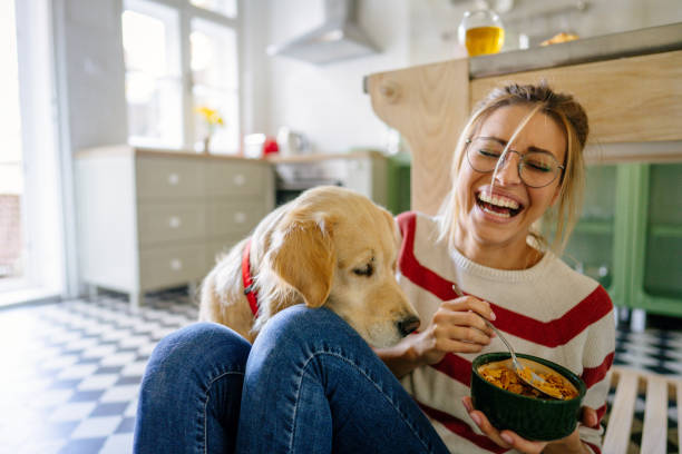 morning with my pet in our kitchen - um animal imagens e fotografias de stock