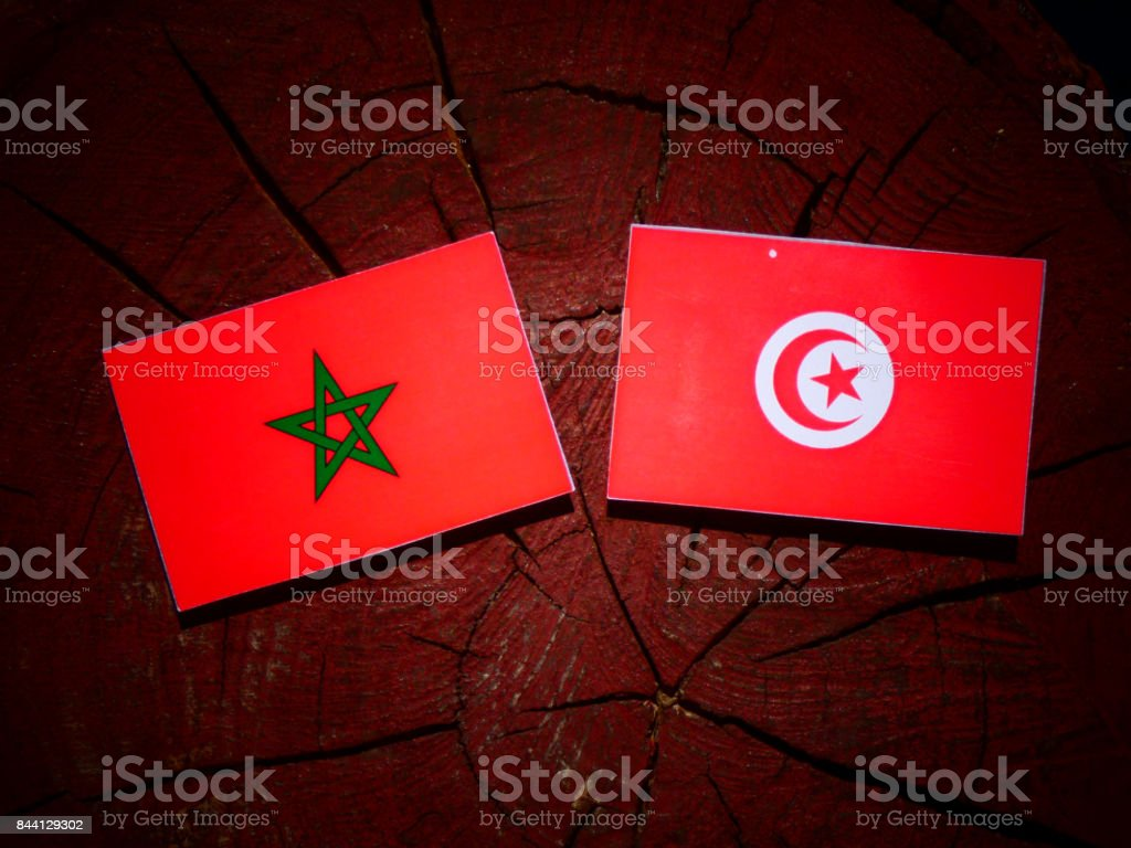 Moroccan flag with Tunisian flag on a tree stump isolated stock photo