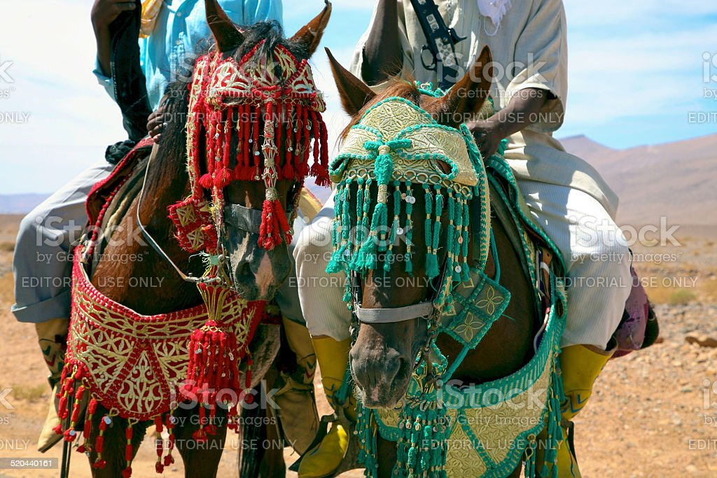 Moroccan horse riders on the road to Marrakesh stock photo