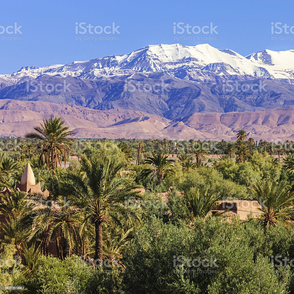 Moroccan oasis and High Atlas mouintain range Moroccan oasia and High Atlas mouintain range on th background. The High Atlas rises in the west at the Atlantic Ocean and stretches in an eastern direction to the Moroccan-Algerian border. Jbel Toubkal is the highest peak (4167m) in the range. Africa Stock Photo