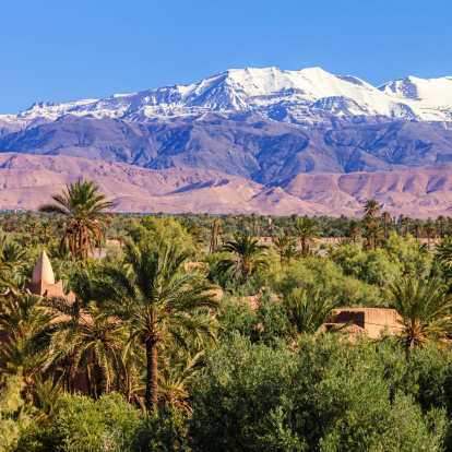 Moroccan Oasis And High Atlas Mouintain Range Stock Photo - Download Image Now