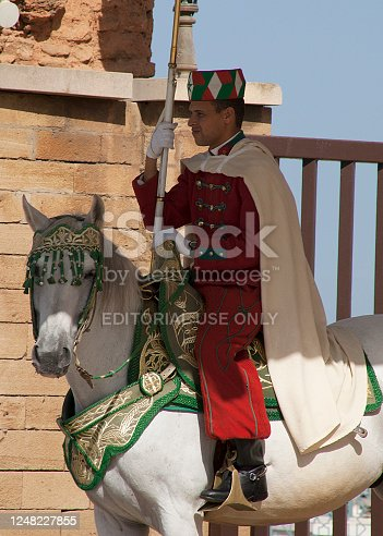 istock Moroccan Royal Guard on his horse in Rabat 1248227855