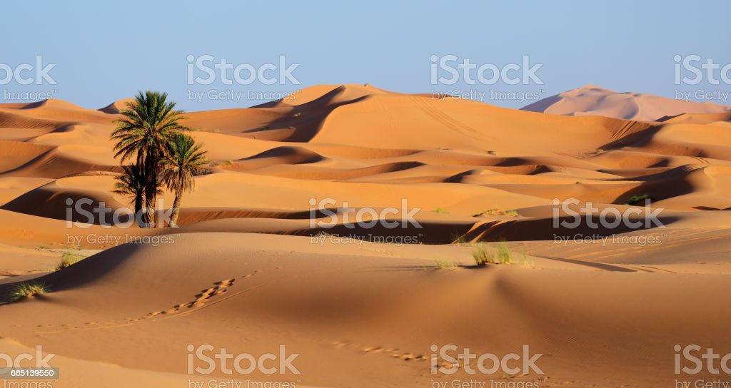 Marokko. Sanddünen der Sahara Wüste – Foto