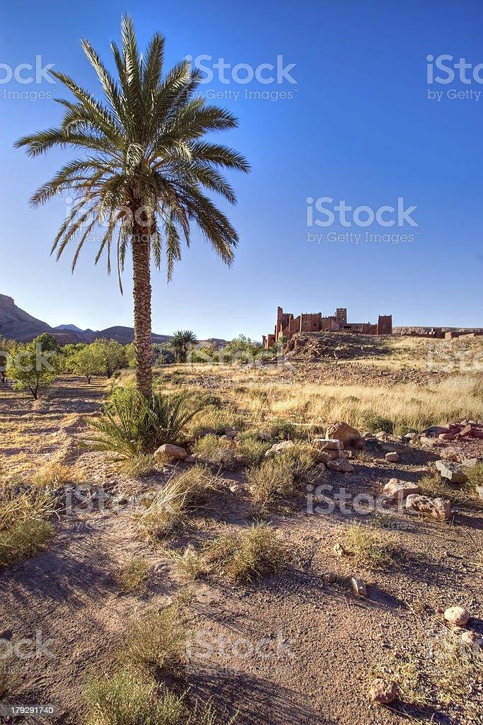 morocco wild landscape stock photo