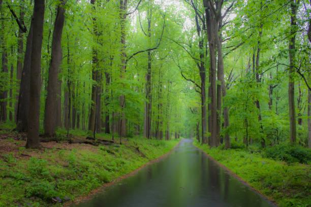 Morristown National Historical Park - NJ stock photo