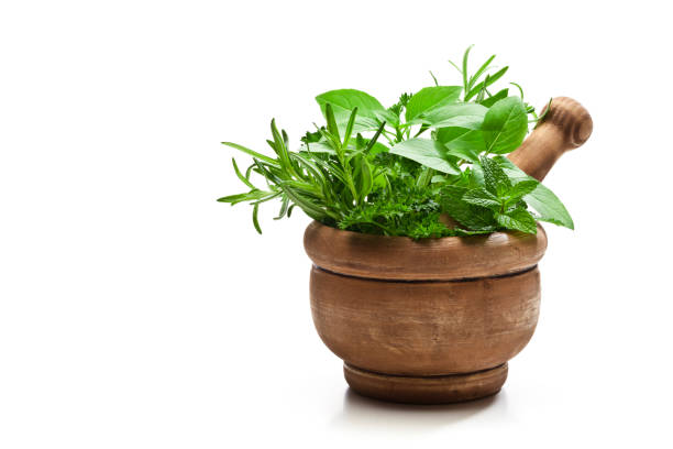 Mortar and pastle with fresh herbs for cooking isolated on white background stock photo