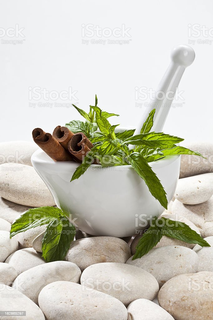 Mortar and Pestle royalty-free stock photo