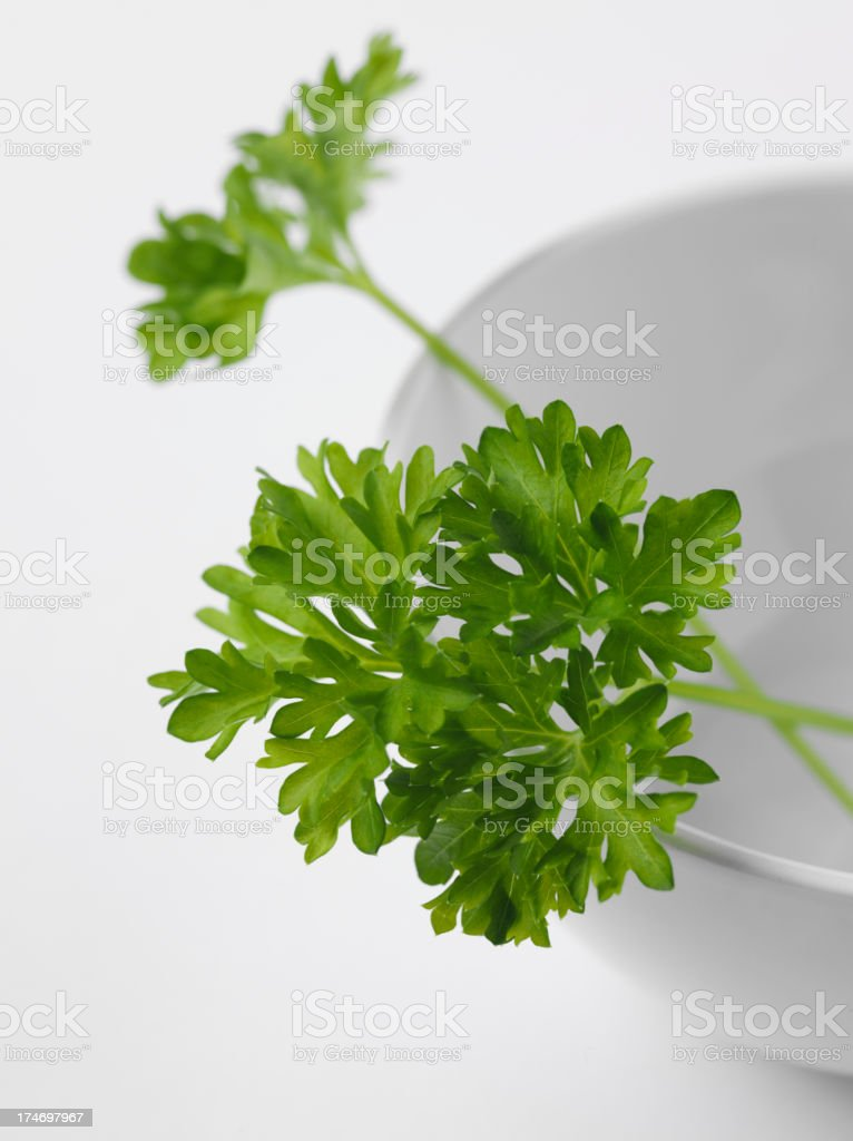 Mortar and Pestle with Parsley royalty-free stock photo