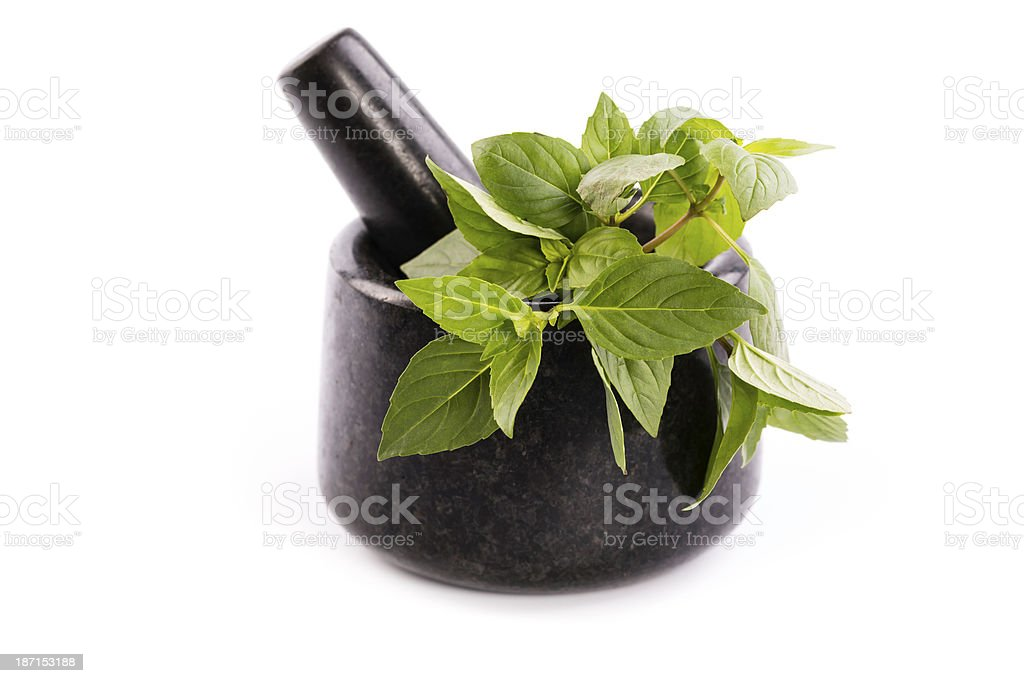 mortar with basil royalty-free stock photo