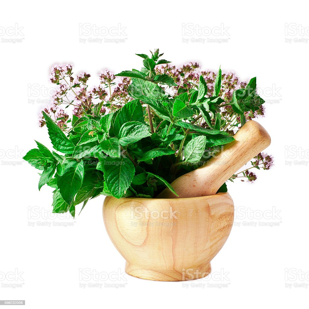 Mortar with fresh mint and oregano foto royalty-free