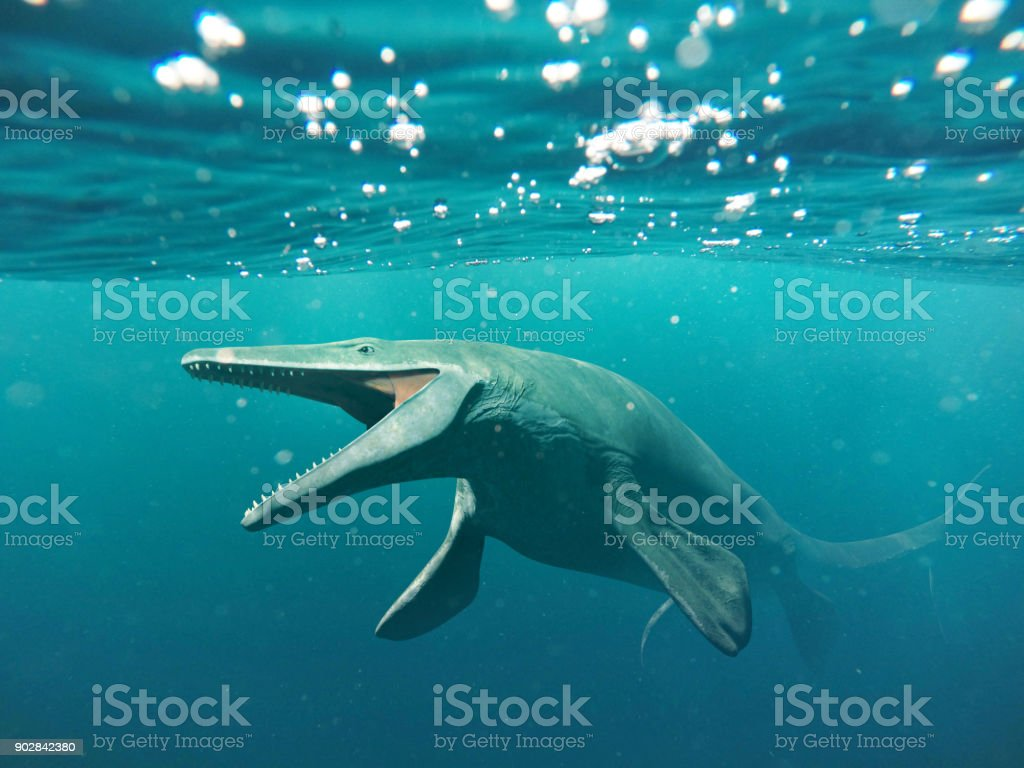 Mosasaurus, 17m aquatic lizard, between 70 and 66 million years ago stock photo