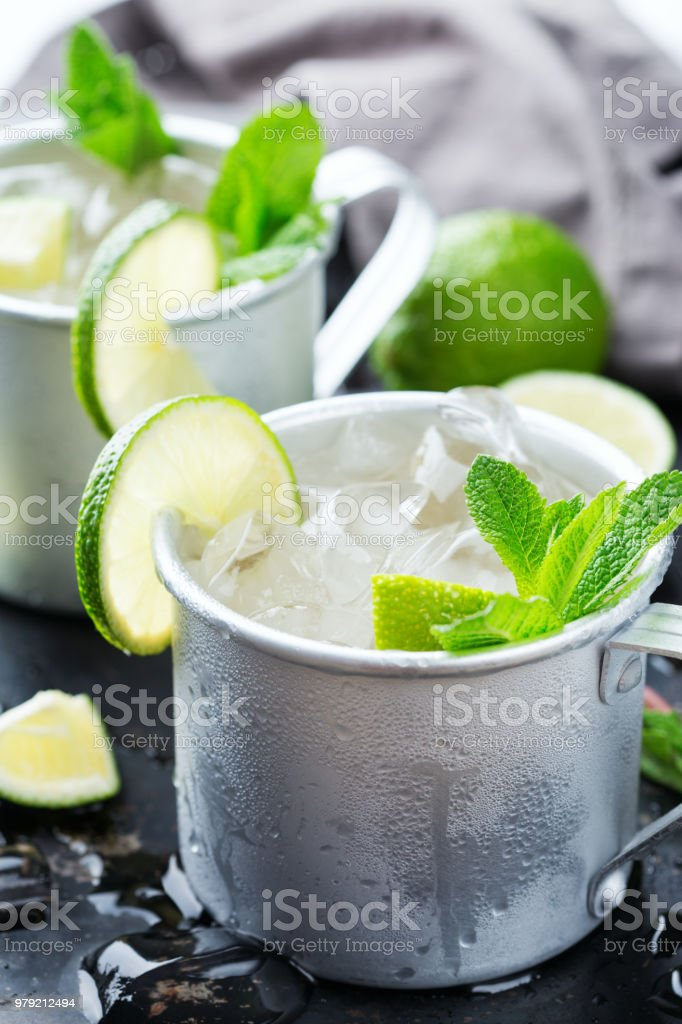 Moscow Mule Cocktail With Vodka Ginger Beer Lime And Mint Stock Photo Download Image Now Istock