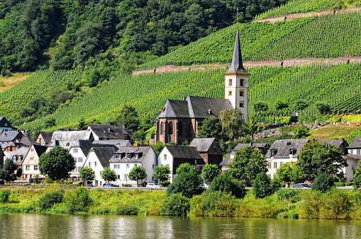Mosel river at village Bremm with vineyard Calmont