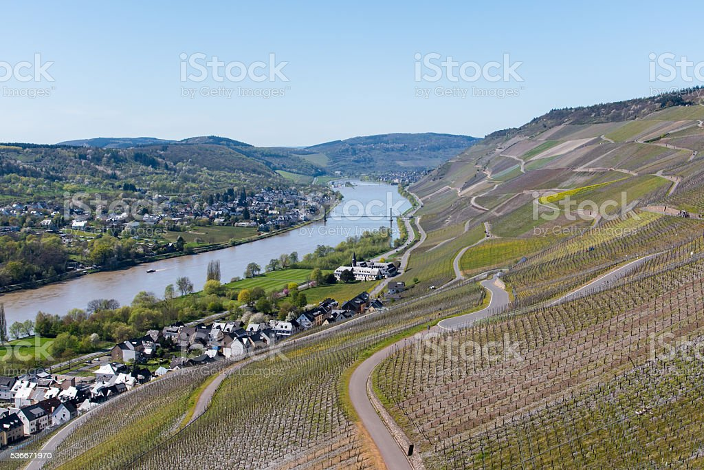Mosel wine region in sunny day stock photo