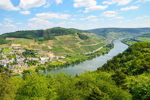 Moselle Valley Germany: View to river Moselle near village Puenderich and Marienburg Castle - Mosel wine region, Germany Europe