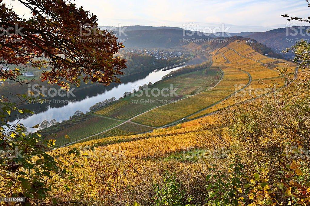 moselle valley in autumn stock photo
