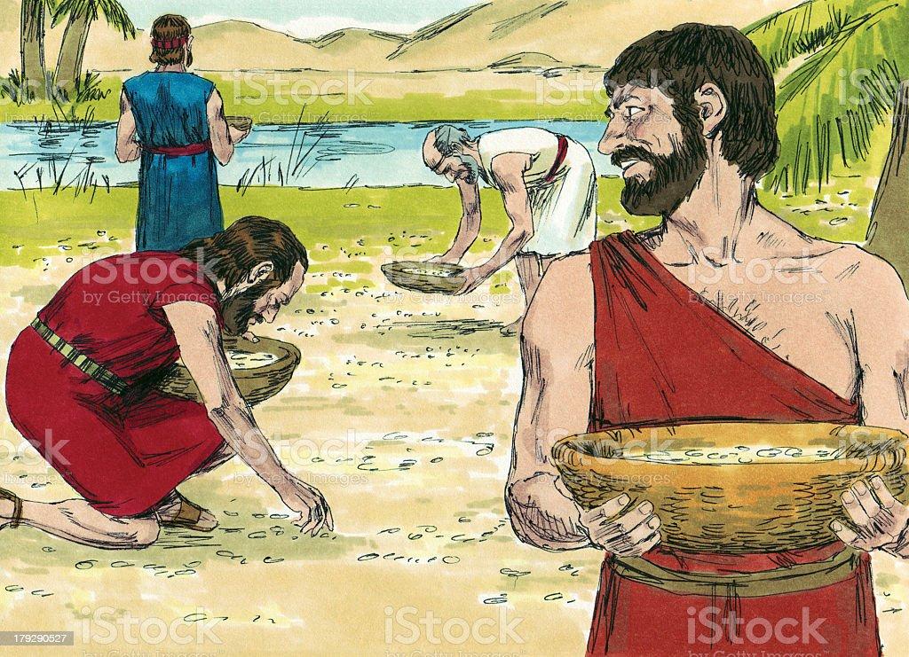 Moses, Israelites Gather Manna stock photo