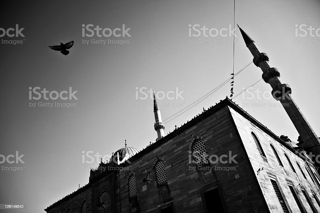 Mosque in black and white royalty-free stock photo