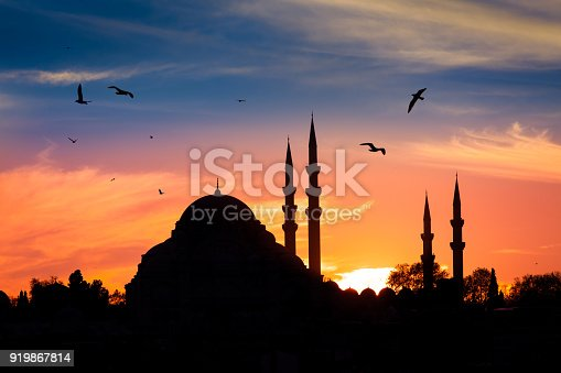istock Mosque in the night in istanbul Turkey 919867814