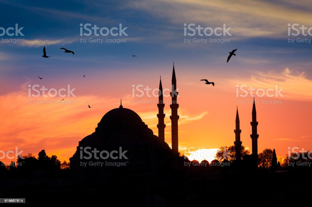 Mosque in the night in istanbul Turkey stock photo