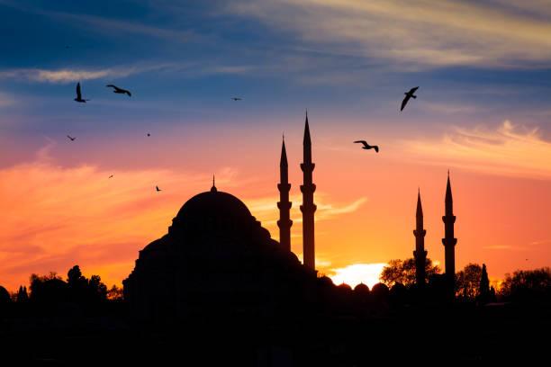 mosque in the night in istanbul turkey - islamismo foto e immagini stock