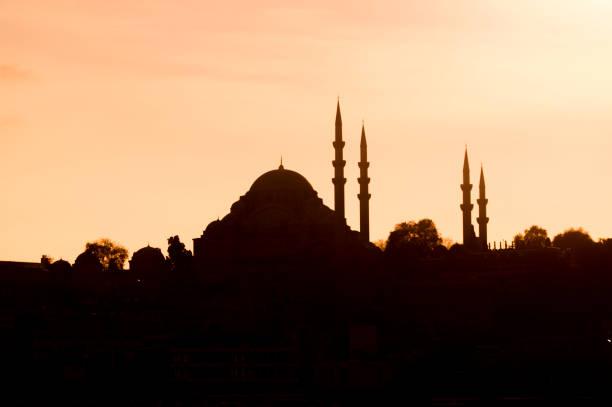Moschee-Silhouette am goldenen Horn Karakoy Istanbul Türkei – Foto
